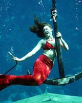 Weeki Wachee Mermaid Shannon
